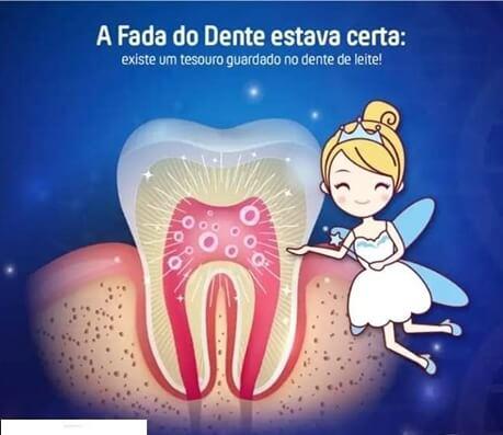 COLETA DE CÉLULAS TRONCO DO DENTE